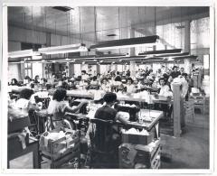 Factoria de ropa interior / Clothing Factory interior