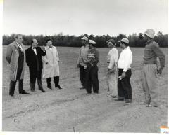 Luis Muñoz Marin & Laborers In A Field