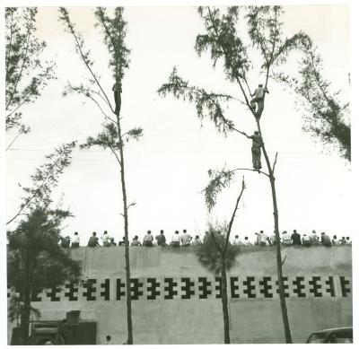 Spectators watching a baseball game