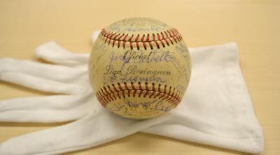 Official Liga Borinquen baseball