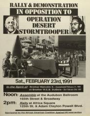 Rally & Demonstration in Opposition to Operation Desert Stormtrooper