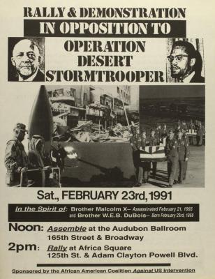 Rally & Demonstration in Opposition to Operation Desert Stormtrooper