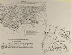 Existing and Proposed Waste Management Facilities in the Bronx Community Districts