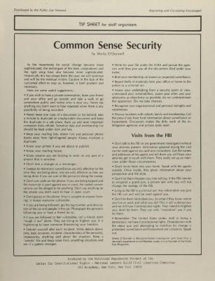 Common Sense Security