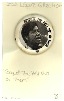 Button: Boycott the hell out of them