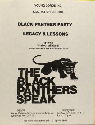 Black Panther Party - Legacy & Lessons
