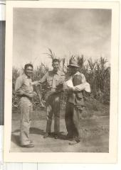 World War II Marine friends in sugar cane field