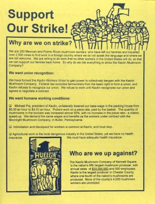Support Our Strike!
