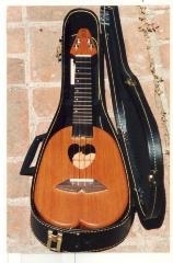 Heart-shaped ukulele in case