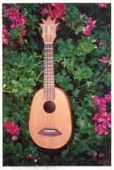 Pineapple ukulele on a bed of flowers