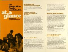 The Puerto Rican Family Institute, Inc. - At a Glance