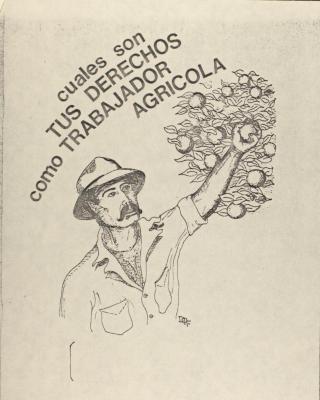 Cuales Son Tus Derechos Como Trabajador Agrícola / What Are Your Rights As An Agricultural Worker