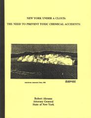 New York Under a Cloud: The Need to Prevent Toxic Chemical Accidents