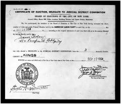Certificate of Election, Delegate to the Judicial District Convention