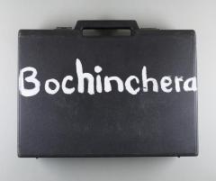 Bochinchera