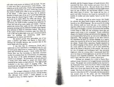 Untitled Literary Excerpt