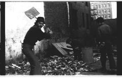 Residents picking through trash on Longwood Avenue